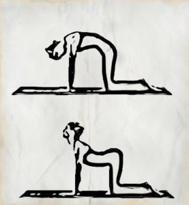 Yoga Exercises for Lower Back Pain