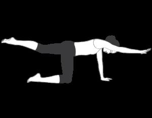 2 Best Lower Back Strengthening Exercises